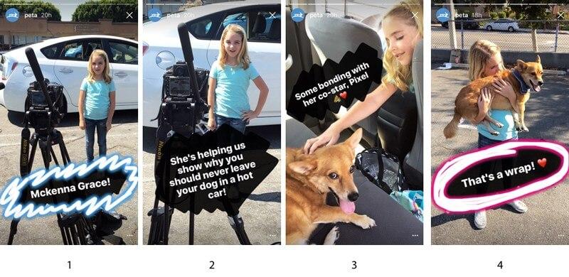 PETA-Instagram-Stories.004
