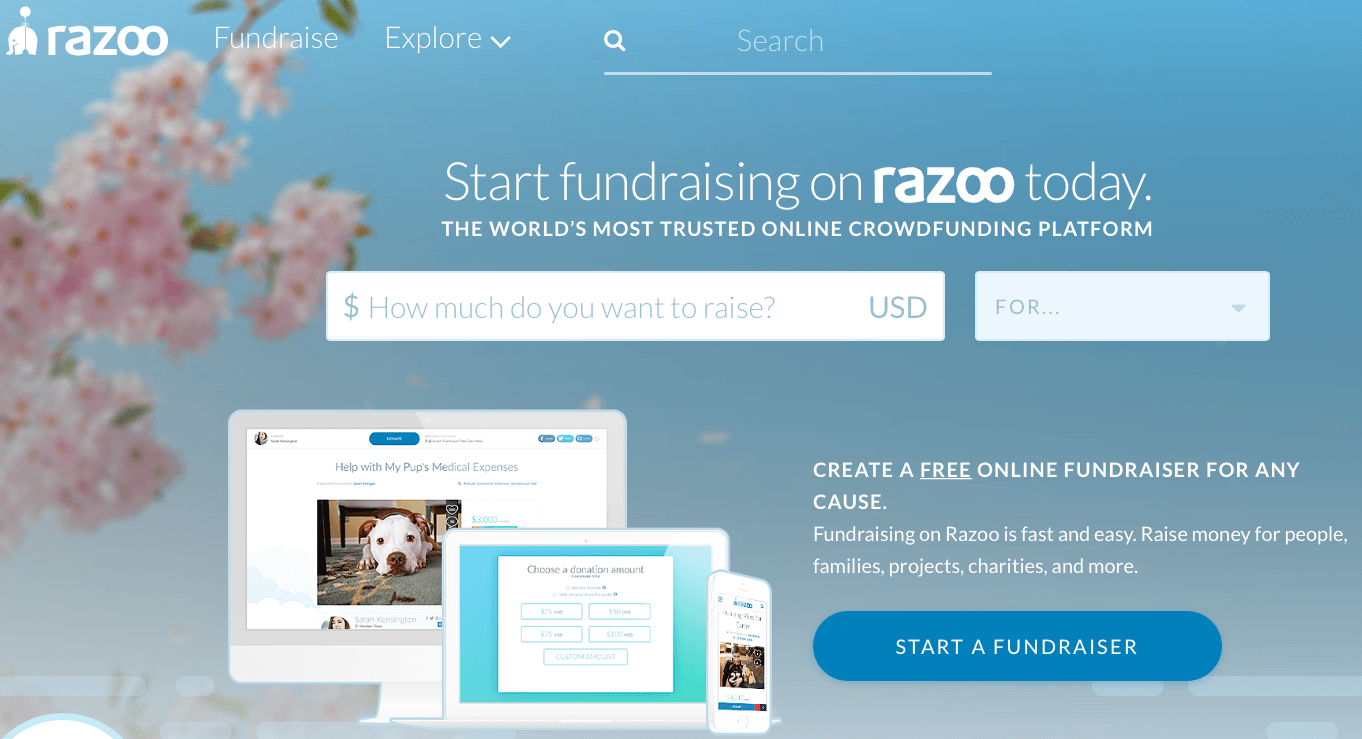 razoo donation tool