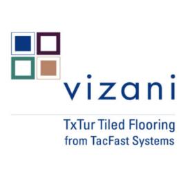 Vizani Logo Design