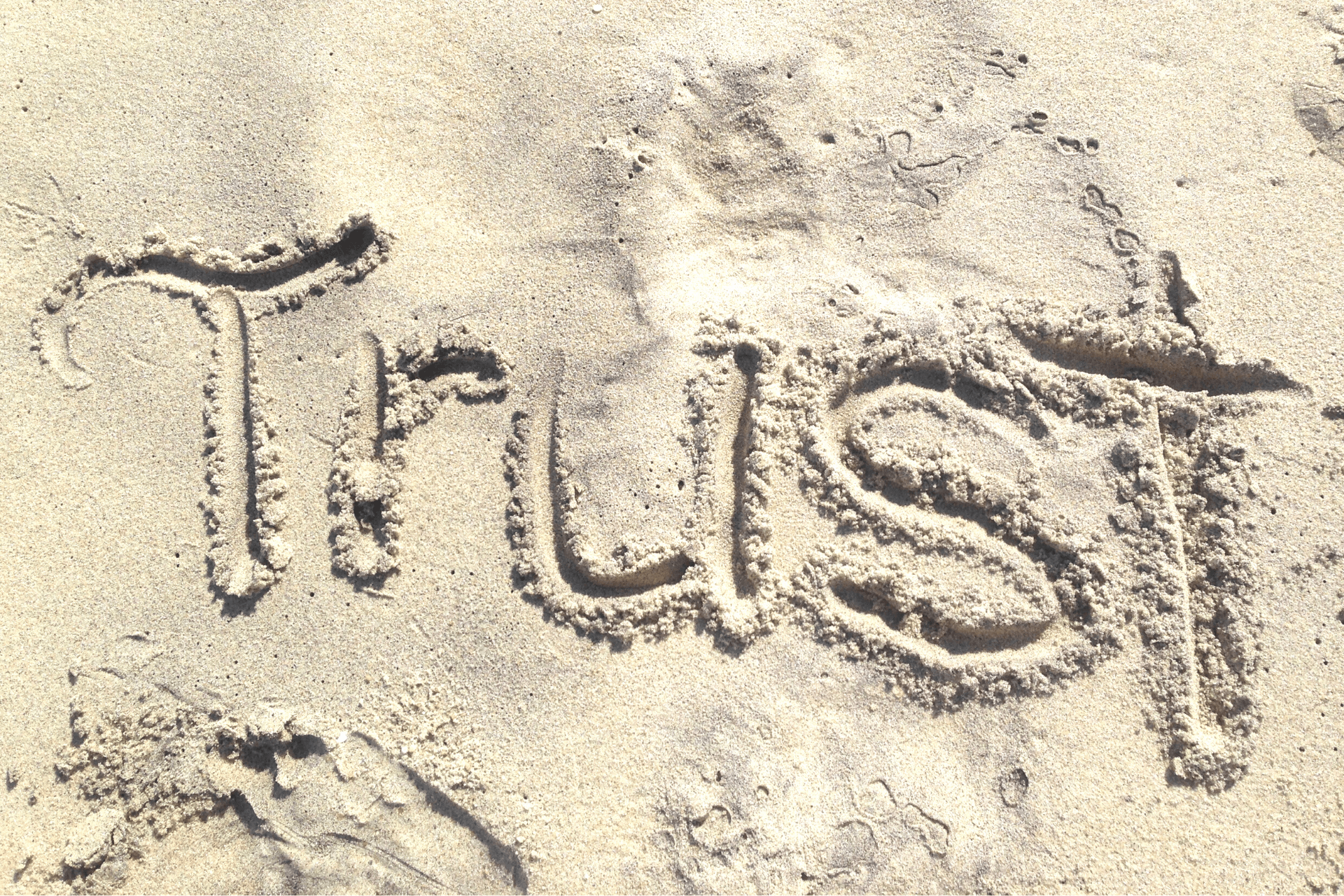 How to Build Trust Online as a Nonprofit
